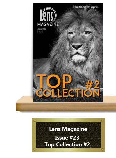 Lens Magazine Issue 23 Top Collection