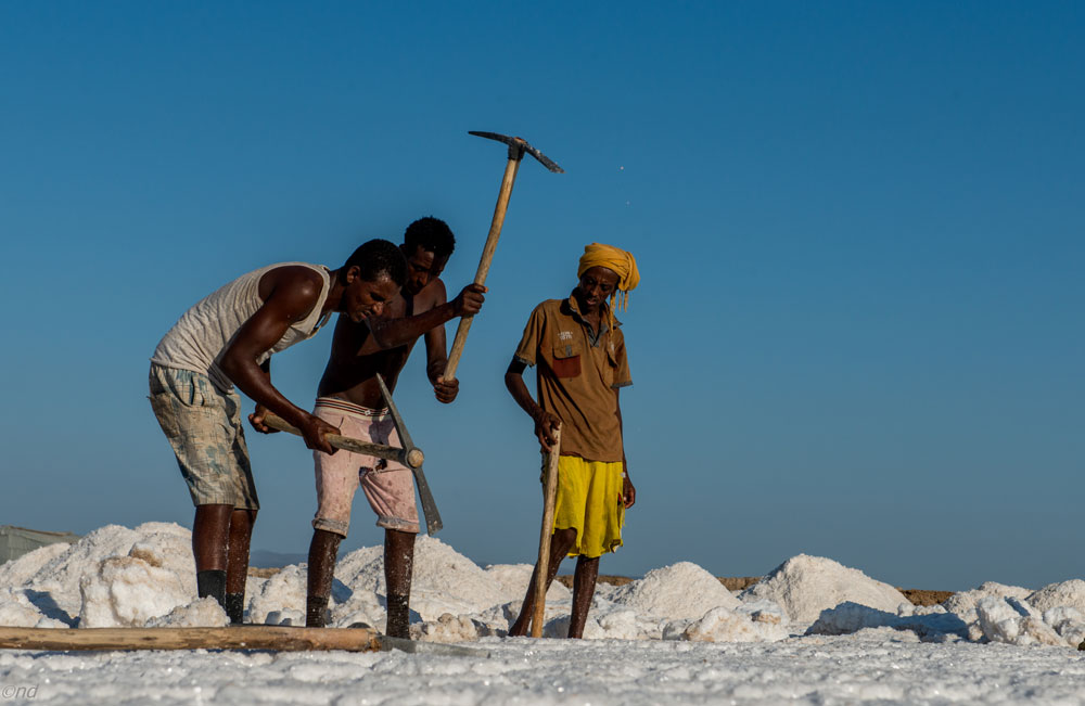 Danakil Desert The Home Of The Afar Tribe By Neta Dekel